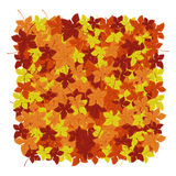 Autumn leaves background. Vector illustration. Floral abstract pattern. Fashion Graphic Design. Symbol of autumn,eco and natural.B Royalty Free Stock Photo