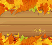 Autumn leaves background on wood Stock Photos