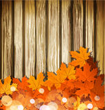 Autumn leaves on the background of a wooden wall Royalty Free Stock Photos