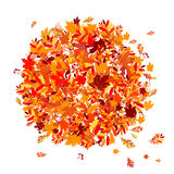 Autumn leaves background for your design Stock Photography