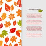 Autumn leaves banner design - fall colorful foliage poster Royalty Free Stock Image