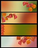 Autumn leaves banner set in lovely vintage color. 4 separate banners for your text Royalty Free Stock Photo