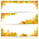 Autumn leaves banner Royalty Free Stock Photography