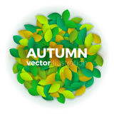 Autumn leaves banner. Summer or autumn leaves banner concept. Round shape of colorful leaves with text block. Bright and stylish. Vector illustration background Stock Images