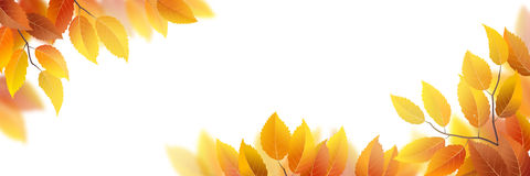 Autumn leaves banner Stock Photography