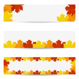 Autumn leaves banners. Autumn banners with autumn leaves Stock Photos
