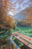 Autumn Leaves at the beatiful Blausee stock photography