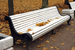 Autumn leaves on the bench. Autumn yellow leaves on the white bench Stock Image