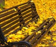 Autumn Leaves On The Bench imagem de stock royalty free
