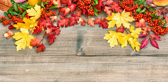 Autumn leaves and berries on rustic wooden background. Vintage s Stock Photo