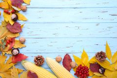 Autumn leaves with berries and vegetables on a blue background royalty free stock photo