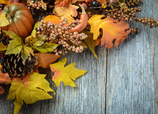 Autumn leaves and berry Stock Photos