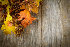 Autumn leaves and berry over wooden background Royalty Free Stock Images