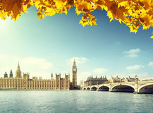 Autumn leaves and Big Ben, London Stock Photography