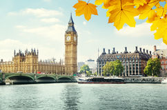 Autumn leaves and Big Ben, London Stock Images