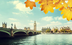 Autumn leaves and Big Ben, London Royalty Free Stock Photography