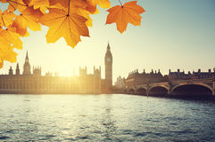 Autumn leaves and Big Ben, London Stock Photos