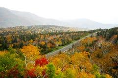 Autumn Leaves bij Shiretoko-Pas, Hokkaido, Japan stock afbeelding
