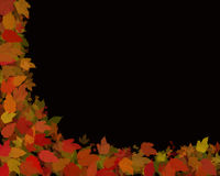 Autumn leaves on black Royalty Free Stock Image