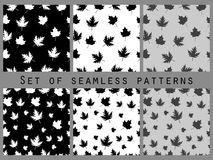 Autumn leaves black and white seamless pattern set. Royalty Free Stock Photos
