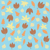 Autumn Leaves On Blue Background Royalty Free Stock Images
