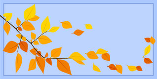 Autumn leaves on a blue background. Vector illustr Stock Photo