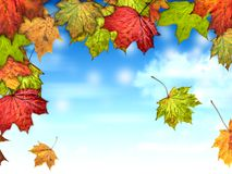 Autumn leaves with the blue sky background. Colorful autumn leaves with the blue sky background Royalty Free Illustration