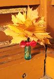 Autumn leaves in blue vase. Colorful autumn leaves in blue vase with red bow Royalty Free Stock Photography