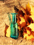 Autumn leaves and  blue vase. Colorful autumn leaves and  blue vase with red bow Royalty Free Stock Photos