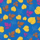 Autumn leaves on blue-01 Royalty Free Stock Image
