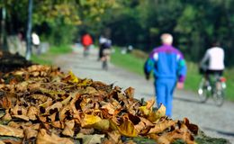 Autumn leaves with blur people. Autumn leaves with people walking along the river Stock Photo
