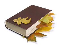 Autumn  leaves in the book Stock Photography