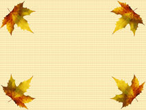 Autumn leaves border royalty free stock photos
