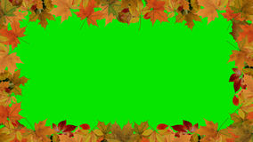 Autumn Leaves Border Stock Foto