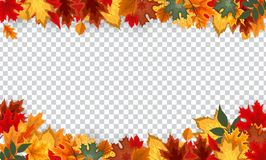 Free Autumn Leaves Border Frame With Space Text On Transparent Background. Can Be Used For Thanksgiving, Harvest Holida Stock Image - 129622131