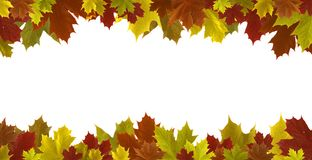 Autumn leaves border isolated. On white background stock photography