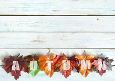 Autumn leaves border Stock Photography