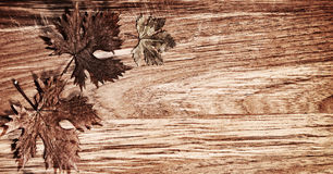 Autumn leaves border over wood background. Autumn leaves border over natural wood background, old dry leaf shape, nature at fall Stock Photo
