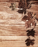 Autumn leaves border over wood background. Autumn leaves border over natural wood background, old dry leaf shape, nature at fall Stock Photography