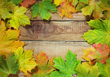 Autumn leaves border on rustic background Stock Images