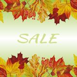 Autumn leaves border sale text background royalty free stock image