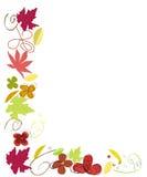 Autumn leaves border vector illustration Stock Image