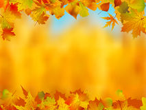 Autumn leaves border for your text. Stock Photos