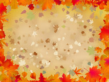 Autumn leaves border for your text. EPS 8 Royalty Free Stock Photography
