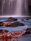 Autumn leaves at the bottom of a waterfall Royalty Free Stock Image
