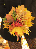 Autumn leaves bouquet. In hands of young woman Stock Photos