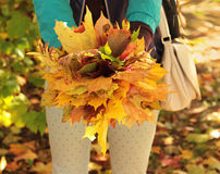 Autumn leaves bouquet Royalty Free Stock Photo