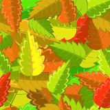 Autumn leaves. Bright autumn pattern with green, yellow, brown and red leaves Royalty Free Stock Photos