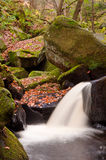 Autumn leaves and Burbage Brook in Padley Gorge in Peak District Royalty Free Stock Images