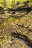 Autumn Leaves in Buttermilk Gorge Stock Photo